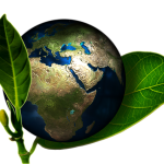 earth-ecology