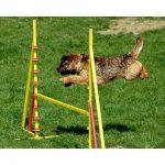 hurdle_01